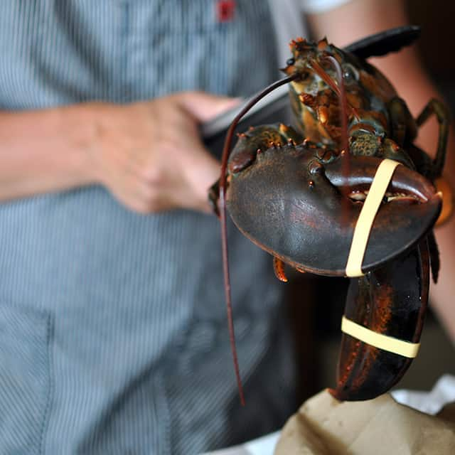 How to Cook and Clean Lobster