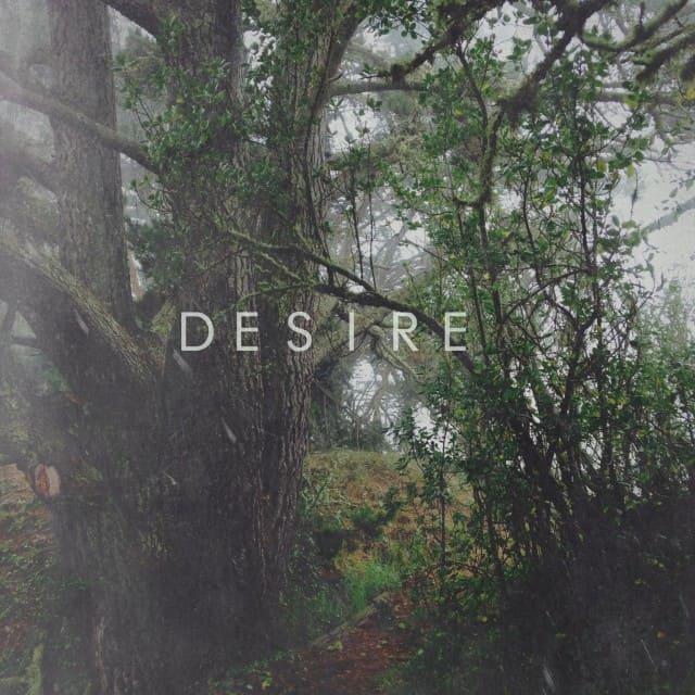Desirecover (1)