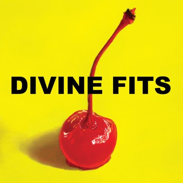 Divine Fits1 640x640 Musical Pairings: Divine Fits   A Thing Called Divine Fits