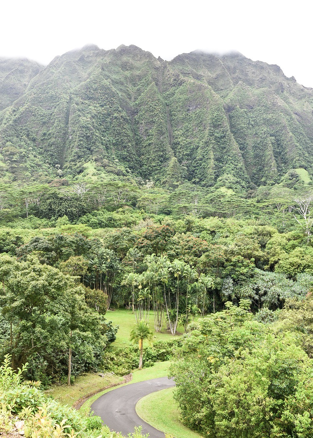Why Your Next Destination Should be Oahu, Hawaii
