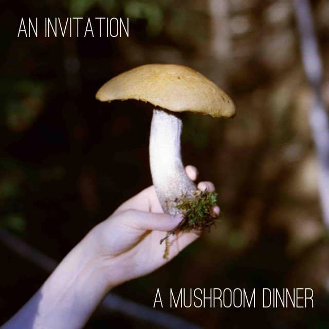 Wilder Quarterly Mushroom Dinner