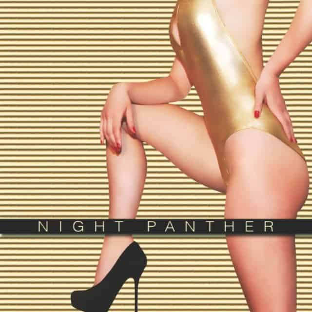 Night Panther - Delta single Small Plates Records 7 45 rpm