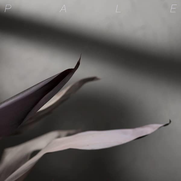 Pale Comeback