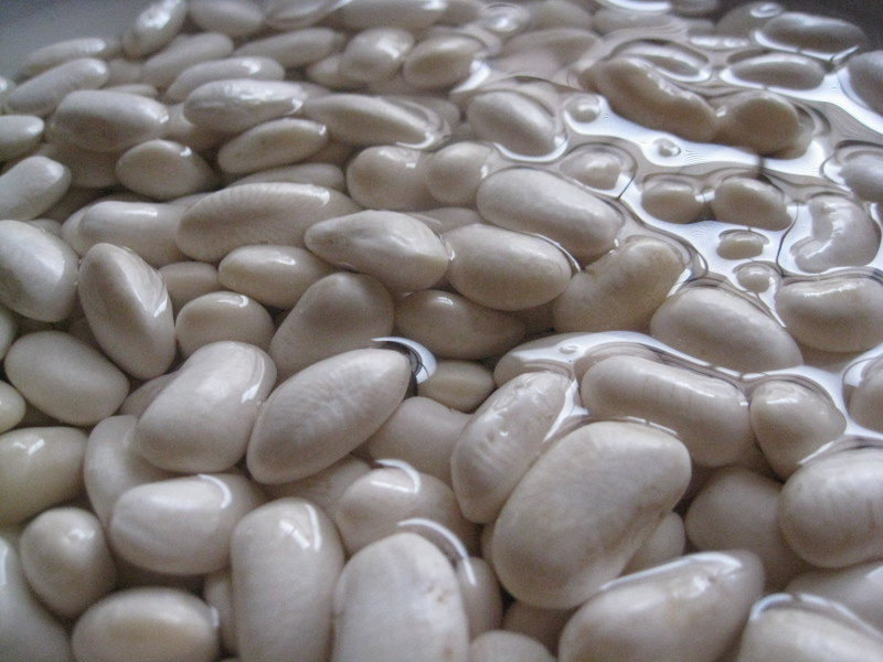Creamy Bronzed White Beans with Chard