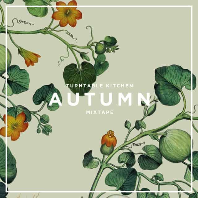 tk_autumnmix_2015