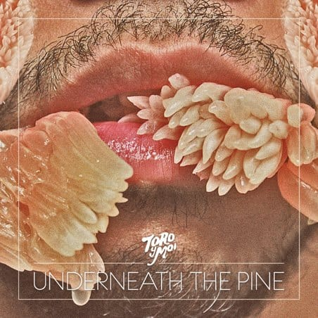 toro   Musical Pairings: Toro y Moi – Underneath the Pine