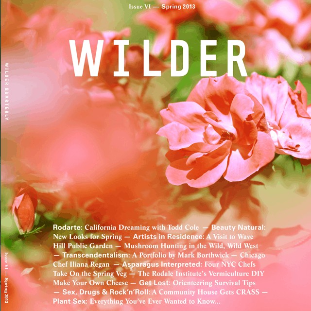 Wilder Quarterly